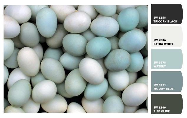 Robin Egg Blue Paint Sherwin Williams Loris Decoration