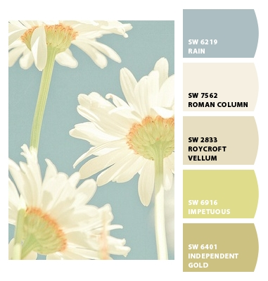 Colorsnap By Sherwin Williams Colorsnap By Tlcieniewicz